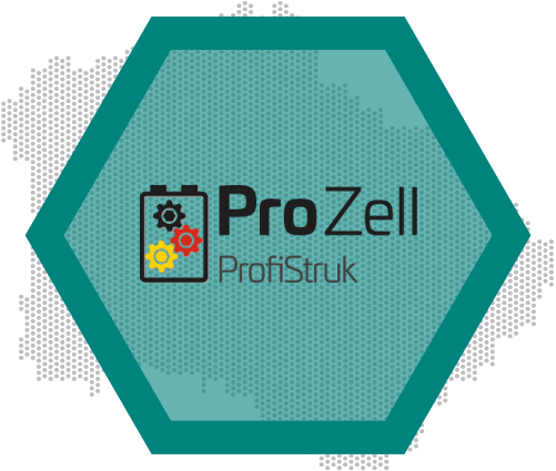Logo ProfiStruk